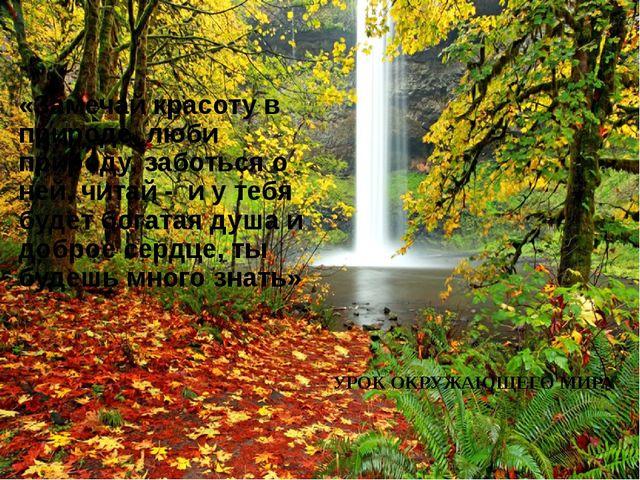 «Замечай красоту в природе, люби природу, заботься о ней, читай - и у тебя бу...