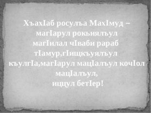 ХъахIаб росулъа МахIмуд – магIарул рокьиялъул магIилал чIваби рараб тIамур,гI