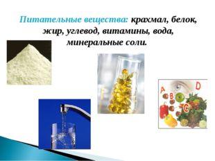Питательные вещества: крахмал, белок, жир, углевод, витамины, вода, минеральн