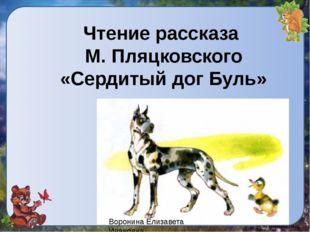 Чтение рассказа М. Пляцковского «Сердитый дог Буль» Воронина Елизавета Ивановна