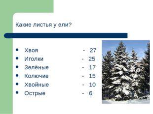 Какие листья у ели? Хвоя - 27 Иголки - 25 Зелёные - 17 Колючие - 15 Хвойные -