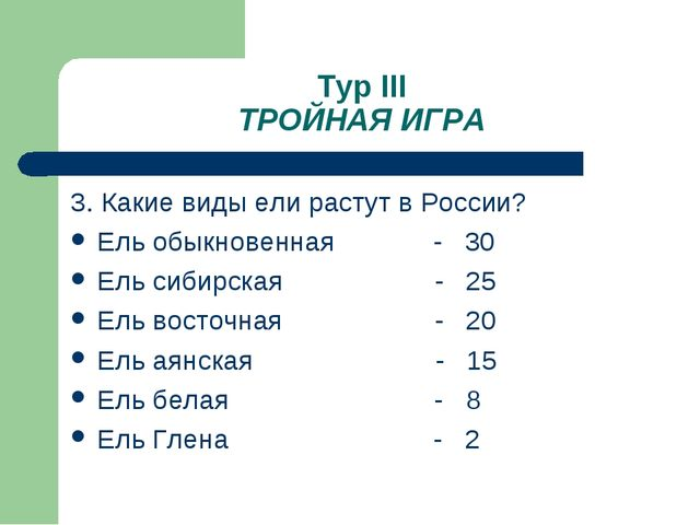 Тур III ТРОЙНАЯ ИГРА 3. Какие виды ели растут в России? Ель обыкновенная - 30...