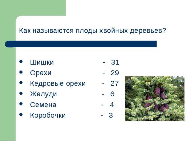 Как называются плоды хвойных деревьев? Шишки - 31 Орехи - 29 Кедровые орехи -...