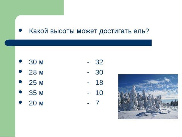Какой высоты может достигать ель? 30 м - 32 28 м - 30 25 м - 18 35 м - 10 20...