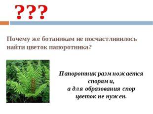 Почему же ботаникам не посчастливилось найти цветок папоротника? Папоротник р