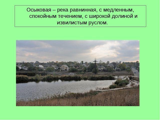 Осыковая – река равнинная, с медленным, спокойным течением, с широкой долиной...