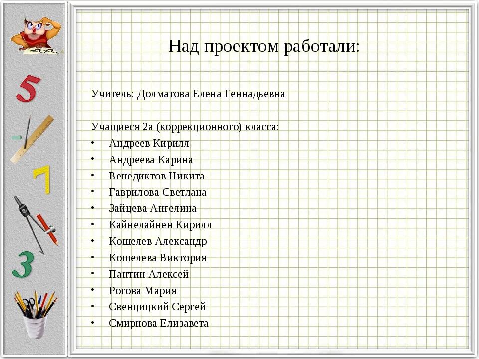Над проектом работали: Учитель: Долматова Елена Геннадьевна Учащиеся 2а (корр...