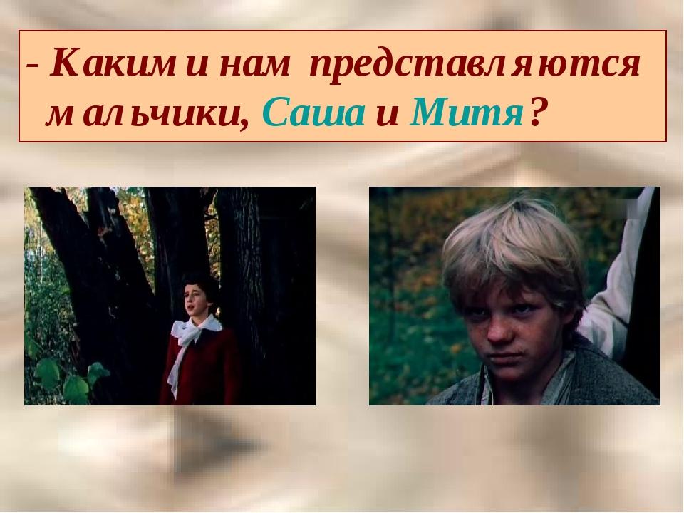 - Какими нам представляются мальчики, Саша и Митя?
