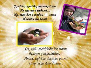 Правда, правда, птичка! ты Не снесешь неволи... Ну, так бог с тобой — лети И
