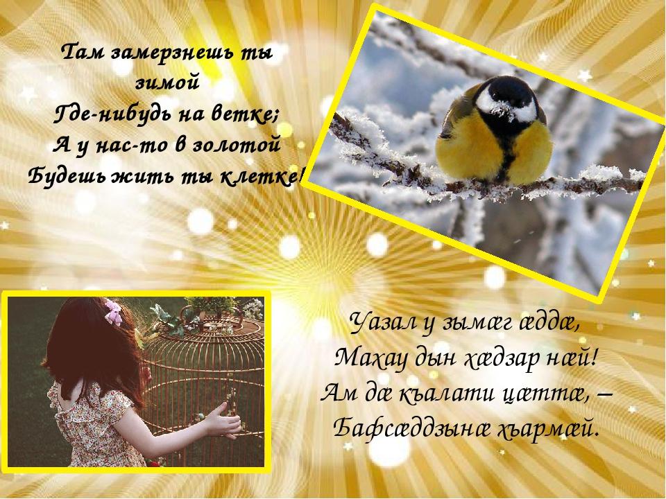 Там замерзнешь ты зимой Где-нибудь на ветке; А у нас-то в золотой Будешь жить...