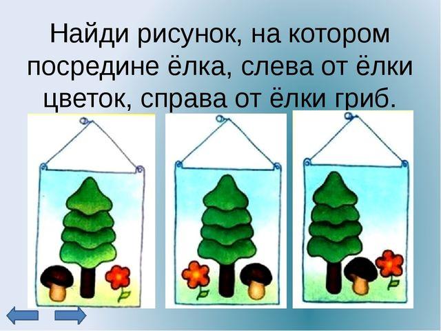 Найди рисунок, на котором посредине ёлка, слева от ёлки цветок, справа от ёлк...