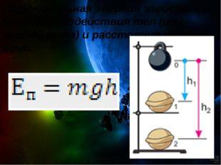 Потенциальная энергия зависит от силы взаимодействия тел (или частей тела) и