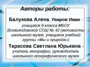 Авторы работы: Балукова Алена, Уваров Иван - учащиеся 9 класса МБОУ Всеволодо