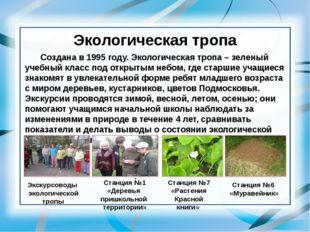 Экологическая тропа Создана в 1995 году. Экологическая тропа – зеленый учебн