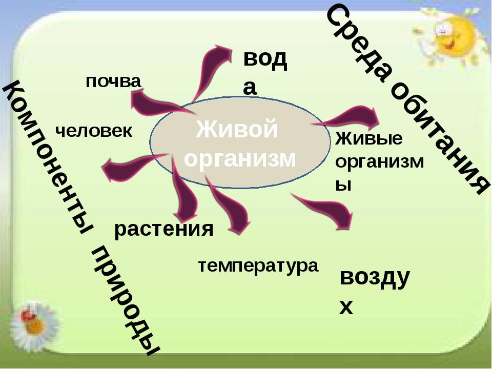 бактерии Живой организм воздух растения Живые организмы вода температура чело...