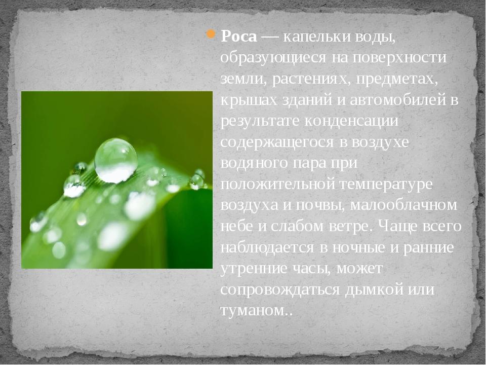 Роса— капельки воды, образующиеся на поверхности земли, растениях, предметах...