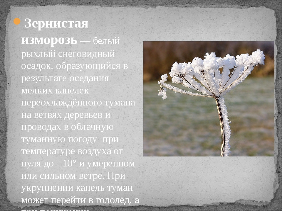 Зернистая изморозь— белый рыхлый снеговидный осадок, образующийся в результа...
