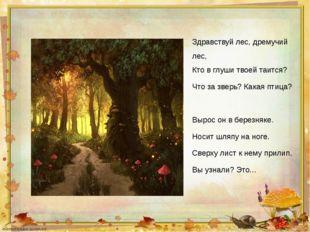 Здравствуй лес, дремучий лес, Кто в глуши твоей таится? Что за зверь? Какая п