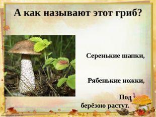 А как называют этот гриб? Серенькие шапки, Рябенькие ножки, Под берёзою расту