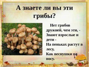 А знаете ли вы эти грибы? Нет грибов дружней, чем эти, - Знают взрослые и дет