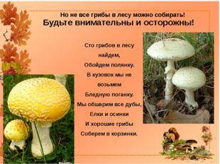 Но не все грибы в лесу можно собирать! Сто грибов в лесу найдем, Обойдем поля