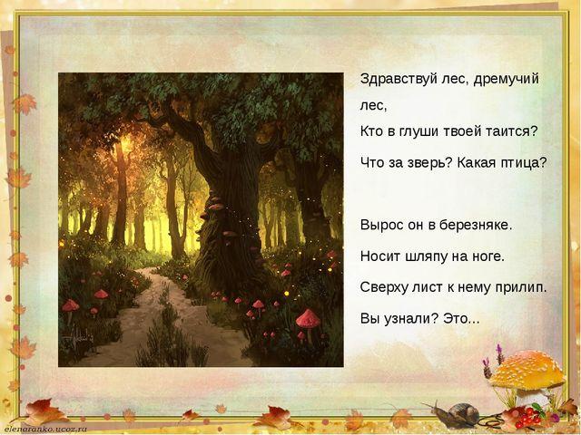 Здравствуй лес, дремучий лес, Кто в глуши твоей таится? Что за зверь? Какая п...