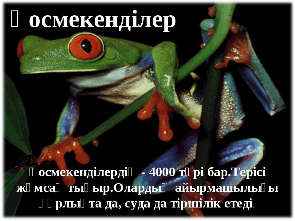 Қосмекенділер Қосмекенділердің - 4000 түрі бар.Терісі жұмсақ тықыр.Олардың ай...