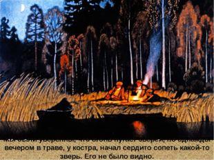 Мы были уверенны, что огонь пугает зверей, но однажды вечером в траве, у кост