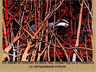 Он бежал и голосил на весь лес, ломал кусты и плевался от негодования и боли.