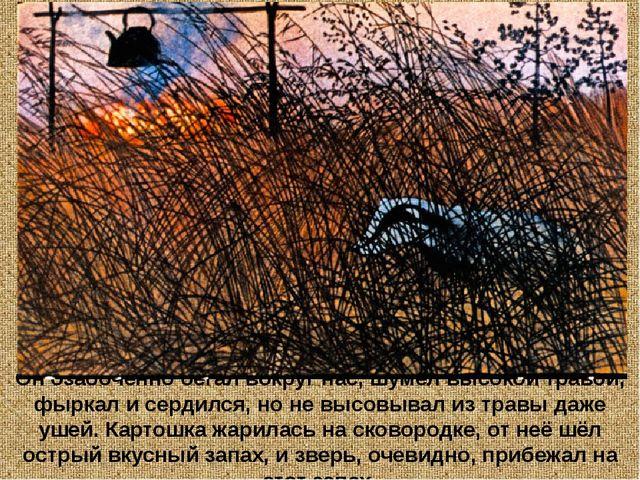 Он озабоченно бегал вокруг нас, шумел высокой травой, фыркал и сердился, но н...