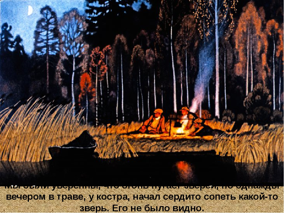 Мы были уверенны, что огонь пугает зверей, но однажды вечером в траве, у кост...