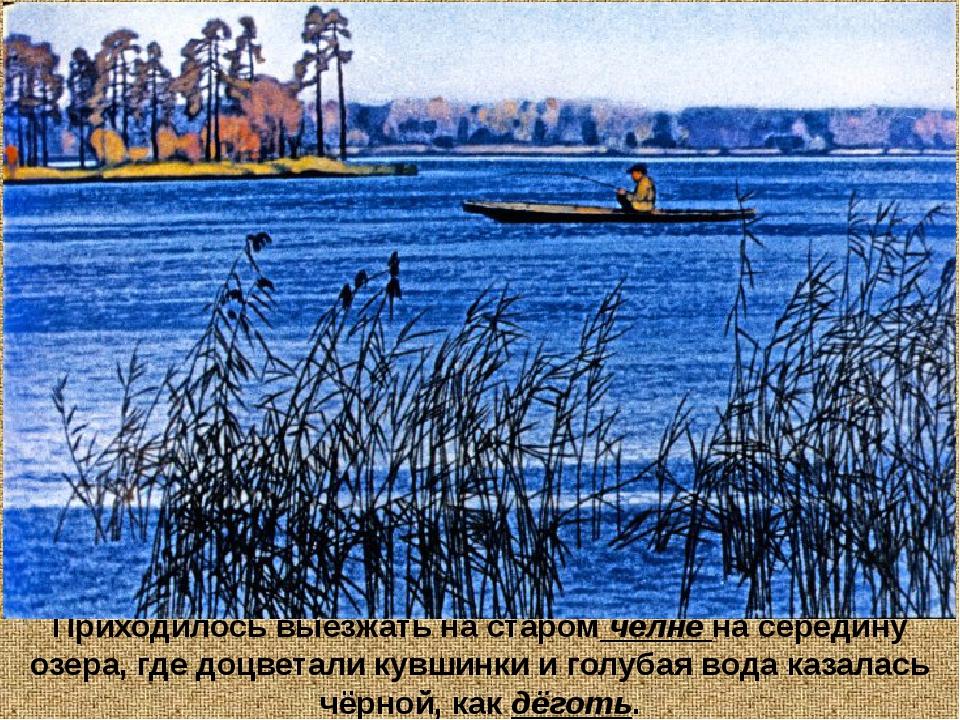 Приходилось выезжать на старом челне на середину озера, где доцветали кувшинк...