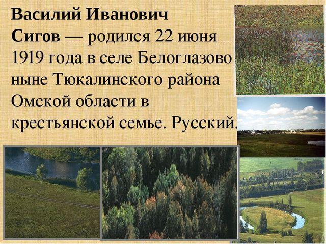 Василий Иванович Сигов— родился 22 июня 1919 года в селе Белоглазово ныне Тю...