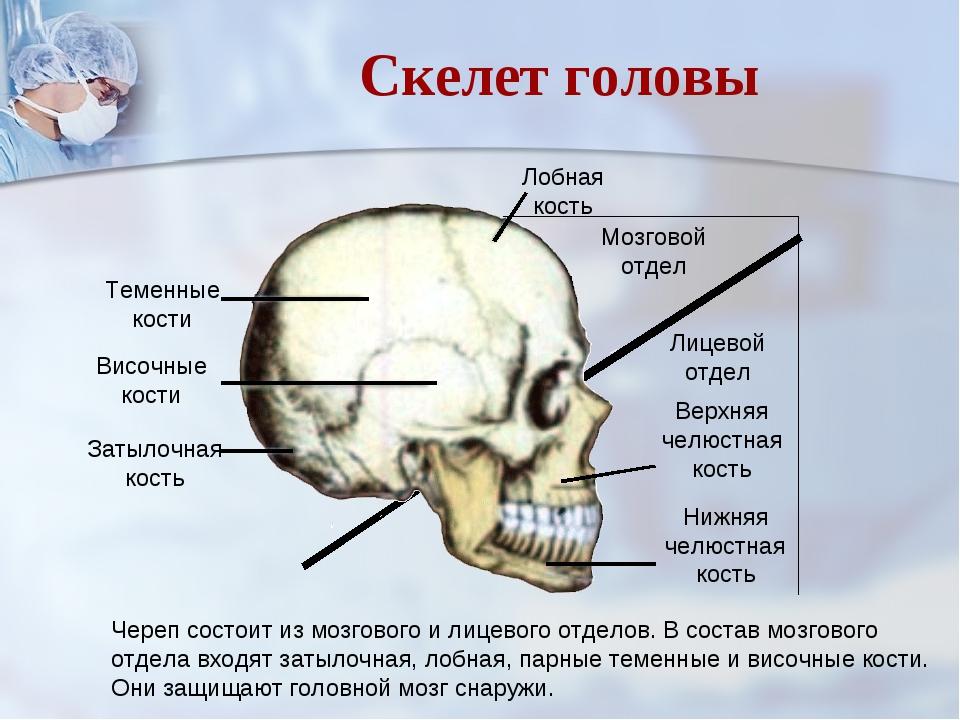 Аватарки картинки с черепами июльским