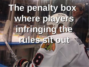 The penalty box where players infringing the rules sit out