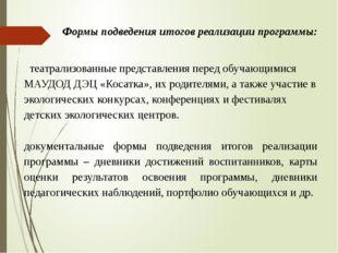 театрализованные представления перед обучающимися МАУДОД ДЭЦ «Косатка», их р