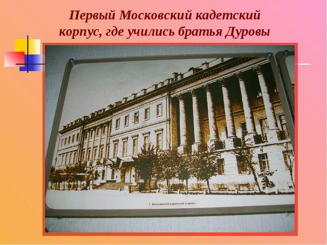 Первый Московский кадетский корпус, где учились братья Дуровы