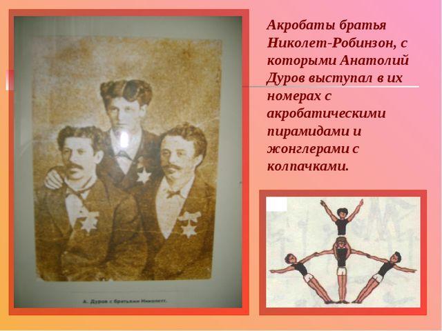 Акробаты братья Николет-Робинзон, с которыми Анатолий Дуров выступал в их ном...