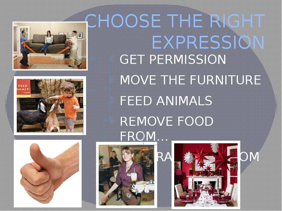 CHOOSE THE RIGHT EXPRESSION GET PERMISSION MOVE THE FURNITURE FEED ANIMALS RE...