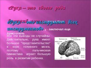 «Рука – это своего рода внешний мозг» , - писал Кант. Все эти выводы не случ