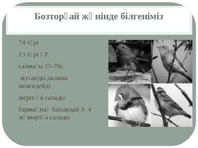 Бозторғай жөнінде білгеніміз 74 түрі 13 түрі ҚР салмағы 15-70г. жусанды далан...
