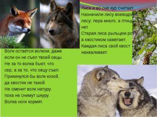 Волк остаётся волком, даже если он не съел твоей овцы. Не за то волка бьют,