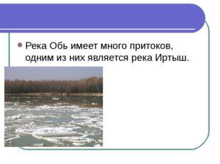 Река Обь имеет много притоков, одним из них является река Иртыш.