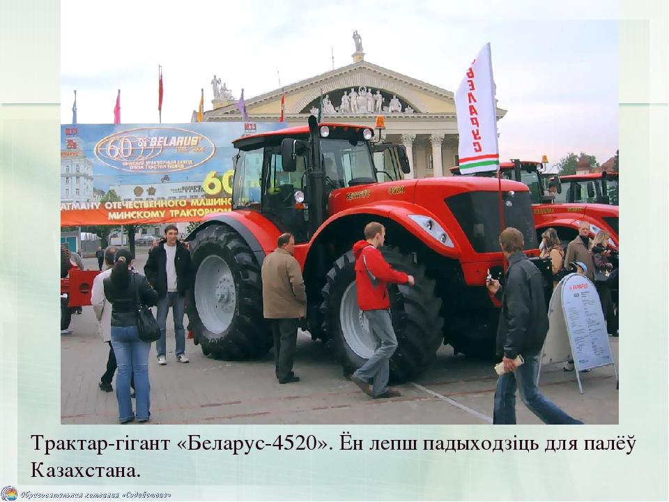 Трактар-гігант «Беларус-4520». Ён лепш падыходзіць для палёў Казахстана.
