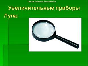 Учитель биологии Ачкасова Ю.М. Увеличительные приборы Лупа: