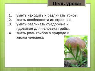 уметь находить и различать грибы, знать особенности их строения, уметь различ