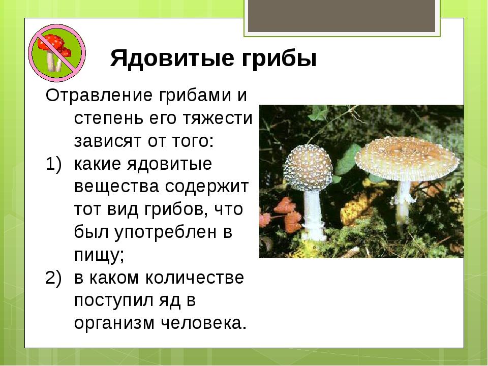 Ядовитые грибы Отравление грибами и степень его тяжести зависят от того: каки...