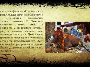 Одно время фетишем была корова: на коровье молоко было наложено табу, а ее ис