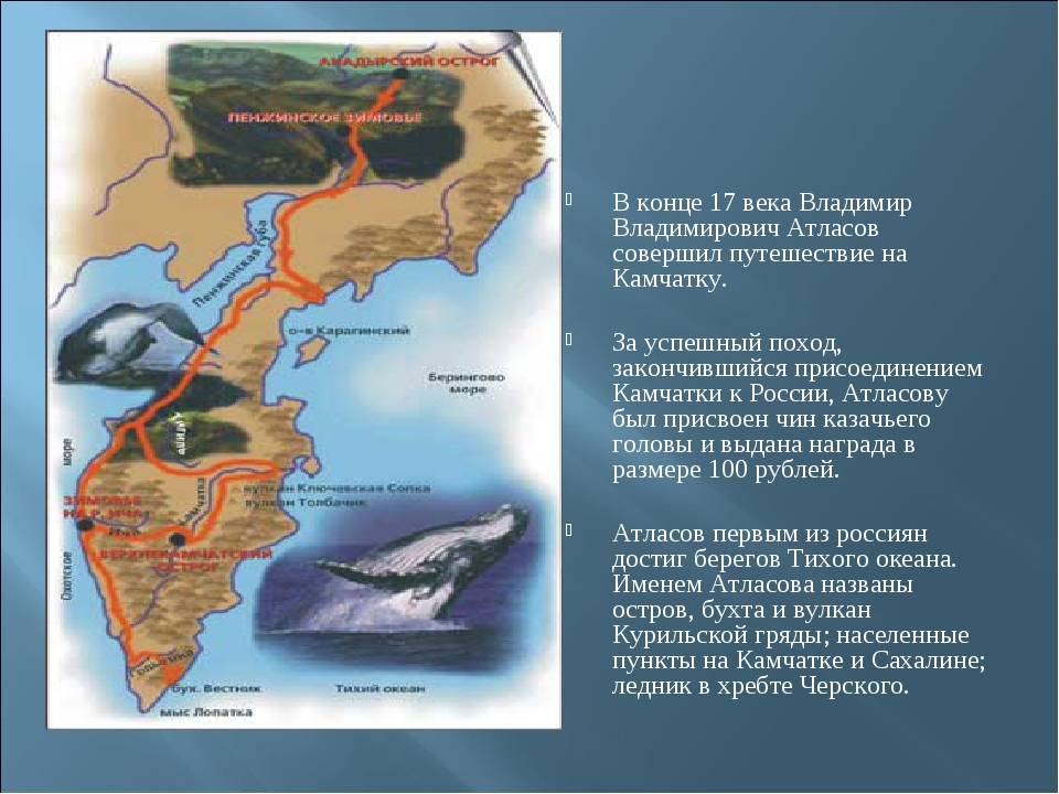 В конце 17 века Владимир Владимирович Атласов совершил путешествие на Камчатк...