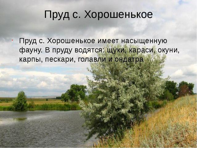 Пруд с. Хорошенькое Пруд с. Хорошенькое имеет насыщенную фауну. В пруду водят...